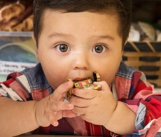 Photo of a little boy chewing on a toy